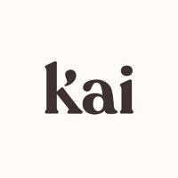 Kai.ai's profile picture