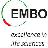 EMBO's profile picture