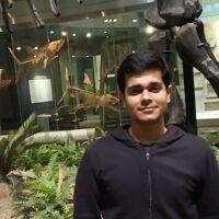 Gunjan Chhablani's profile picture