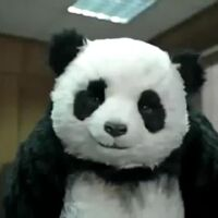 Tianyu Zhao's profile picture