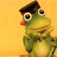 Didier Schwab's profile picture