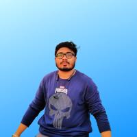 Nilavya Das's profile picture
