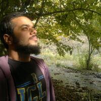Saied Alimoradi's profile picture