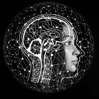 Artelligence's profile picture